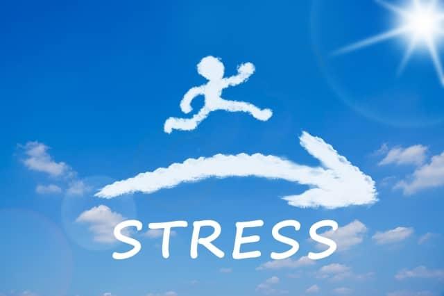 ストレス耐性が高い